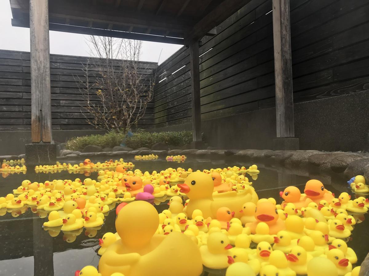湯船に浮かぶ1000匹の「アヒルのおもちゃ」