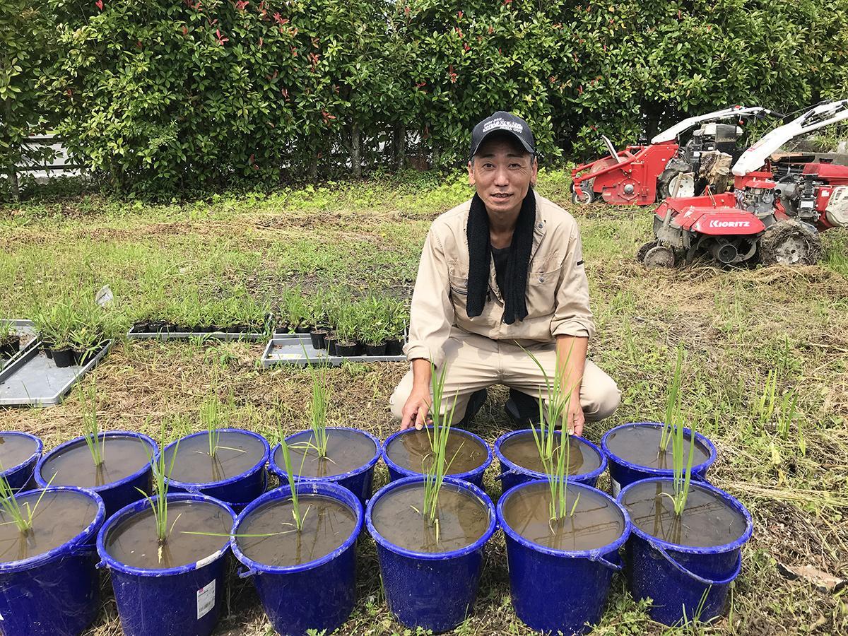 「稲の成長から収穫までを体験してほしい」と話す野村さん。