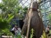 宇部ときわ公園の植物館が「世界を旅する植物館」に 西畠清順さん監修