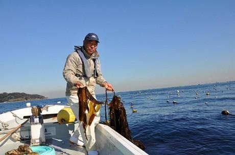 船上の漁業者が携帯電話を使ったネット販売に取り組む。東京湾で操業する横須賀・東部漁協夕市会の栗山義幸さん。
