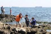 横須賀沖、無人島・猿島でフィッシング大会-サバイバル教室も