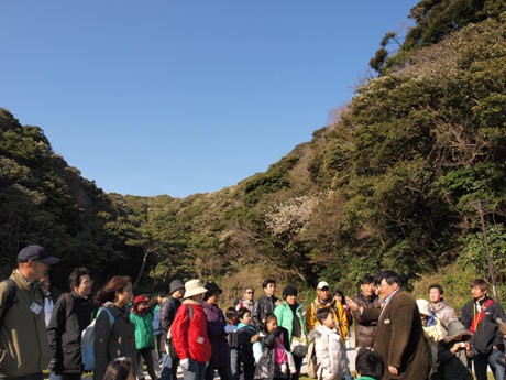 原生林に囲まれ、自然教室なども行われる観音崎公園・たたら浜浜園地