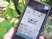 三浦半島、野菜の魅力を紹介-iPhoneアプリ「三浦のおやさい」