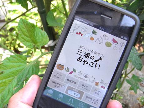 三浦半島の野菜直売所などを紹介するiPhoneアプリ「三浦のおやさい」