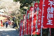 横須賀、武山で「初不動」 年に1度の不動明王ご開帳