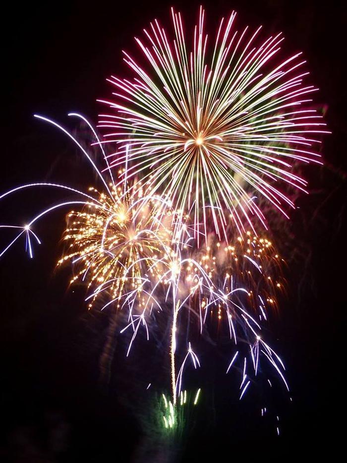 横須賀しょうぶ園で冬の花火(前回の様子)