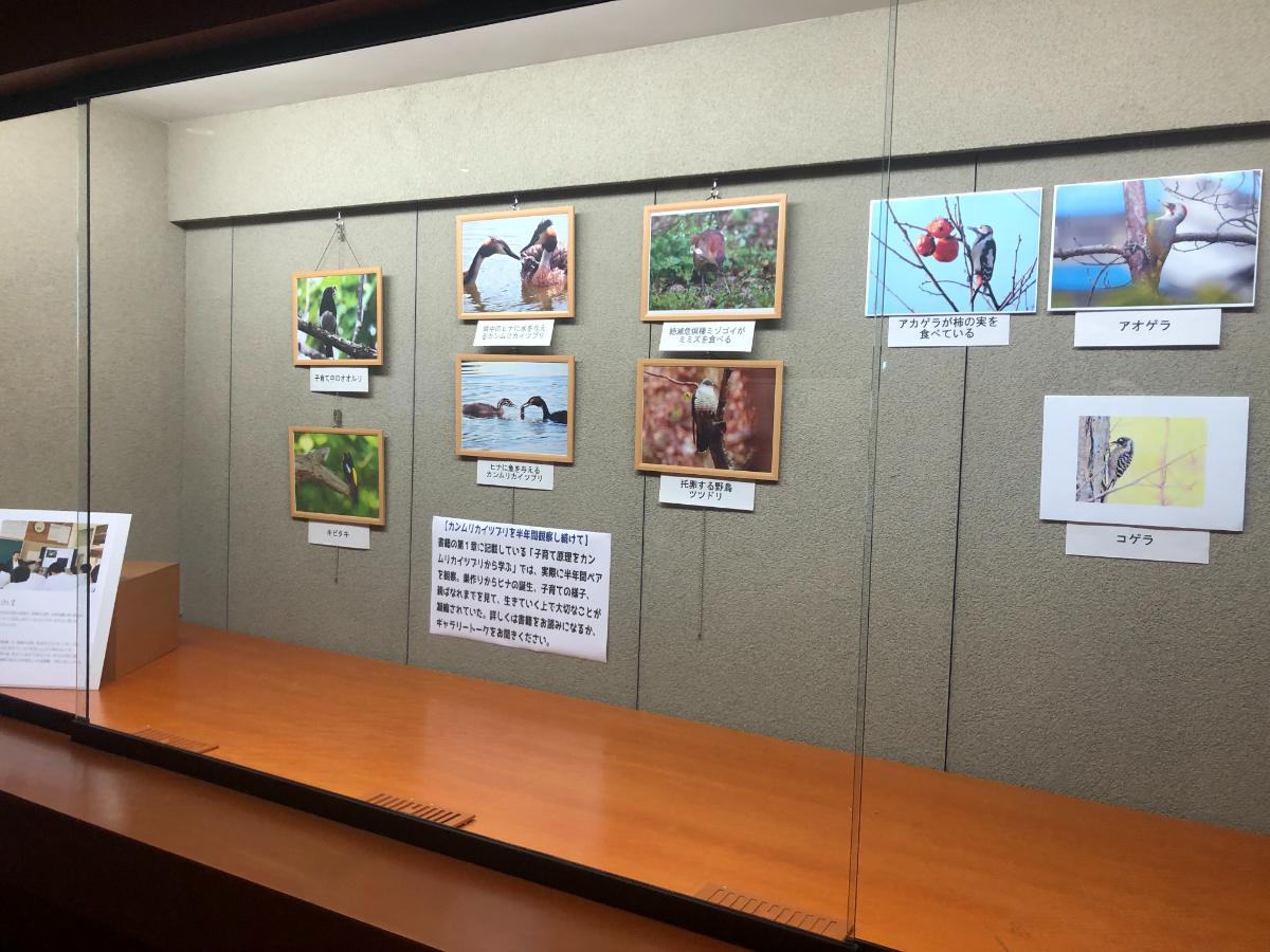 「鳥の目・虫の目・子どもの目」の出版1周年を記念した企画展の様子