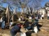 横手城址公園で「秋の掃き清め大作戦」 130人が参加