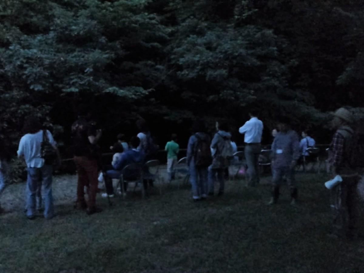 池子の森自然公園緑地エリアで行われたホタルの観察会の様子