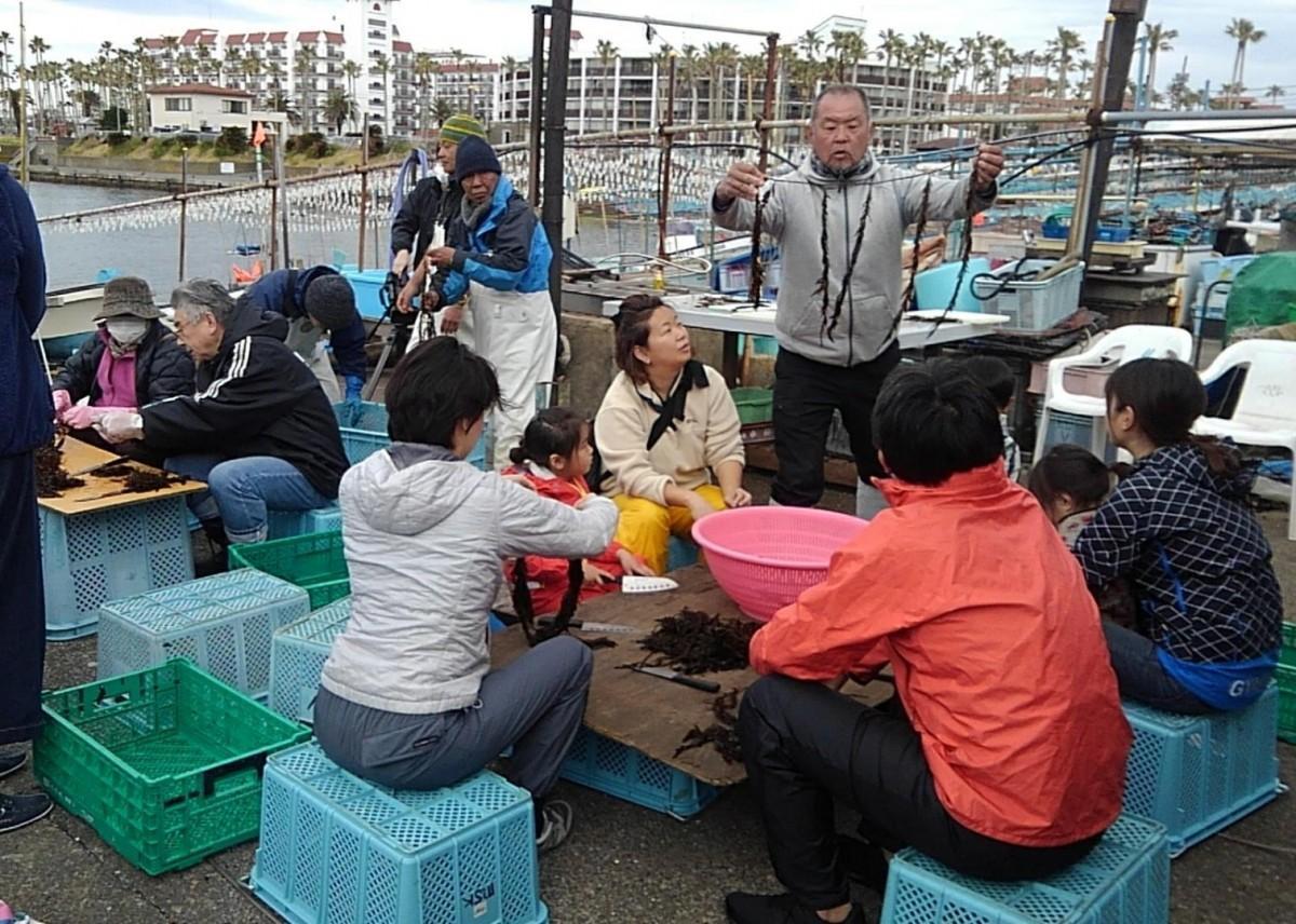 小坪の浜でアカモクを手に参加者に説明する大竹漁業協同組合長(中央)