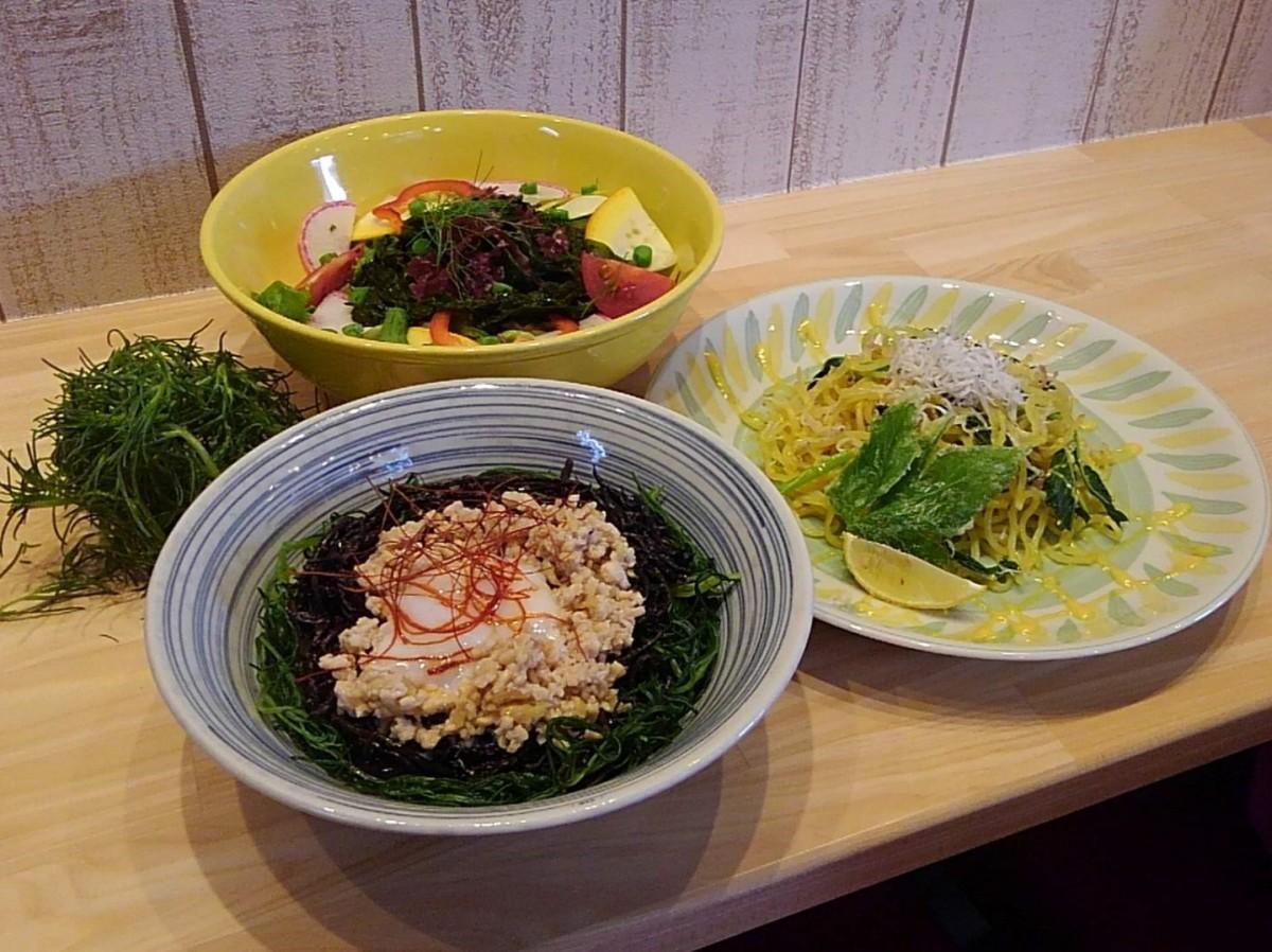 (手前から左回りに)Wひじき丼、海菜サラダ、しらすとあしたばの焼きそば