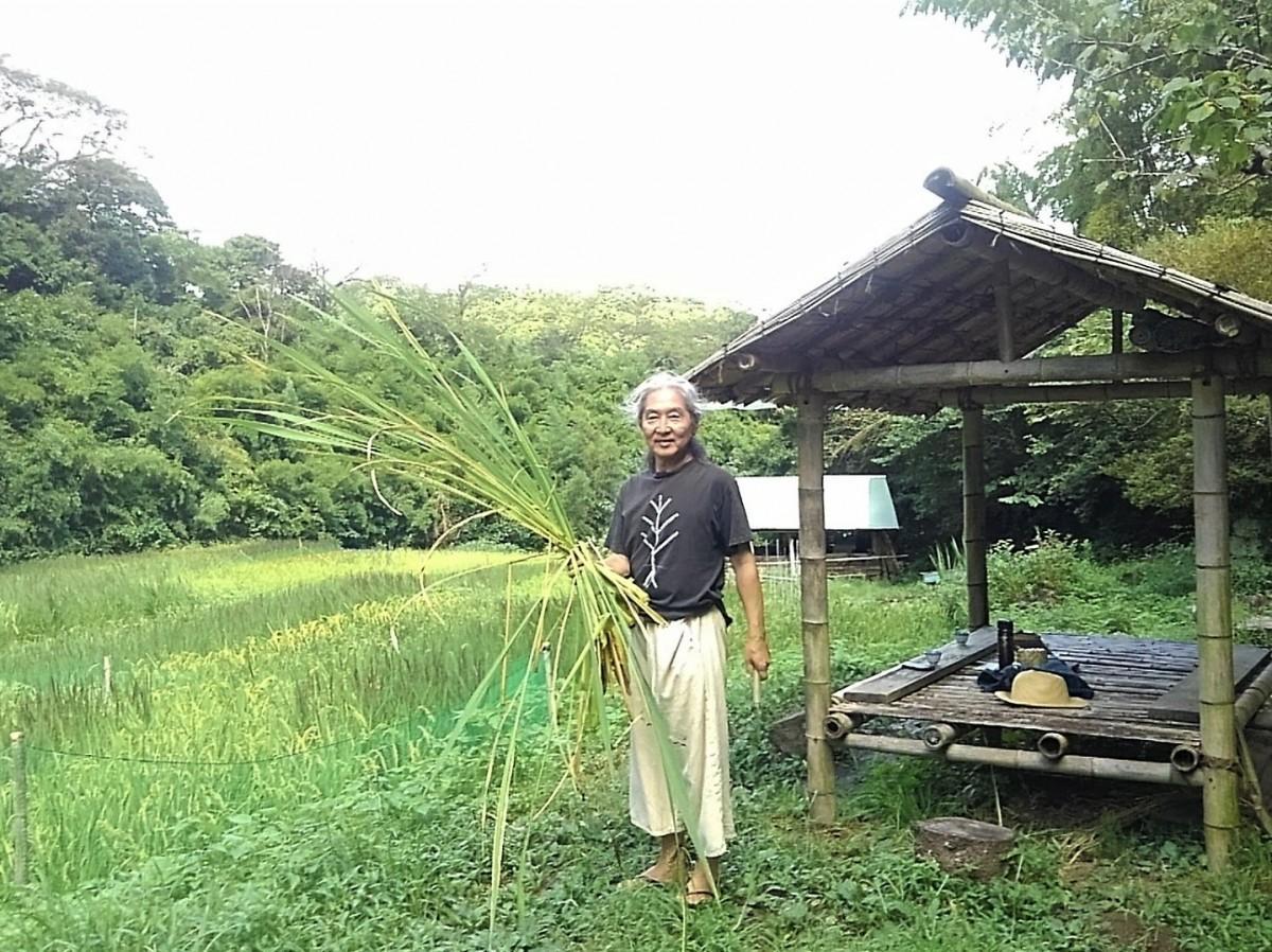 真砂さんが冬期湛(たん)水・不耕起農法で20年向き合ってきた「縄文田んぼ」。手にしているのはマコモタケ